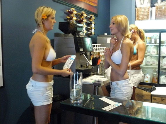 Coffee Bikini Baristas Grab Go Arrested
